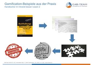 Gamification Bilanzierungshandbuch 2